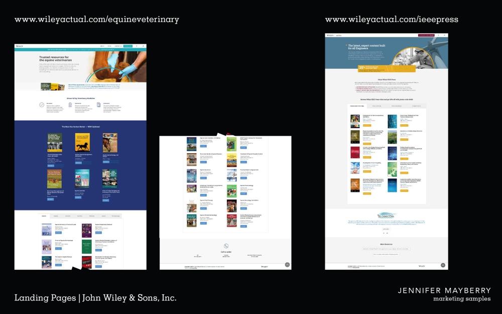 Mayberry J Portfolio Examples 19